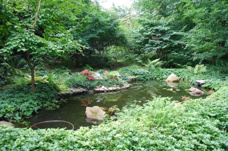 Page title for Pond stream design