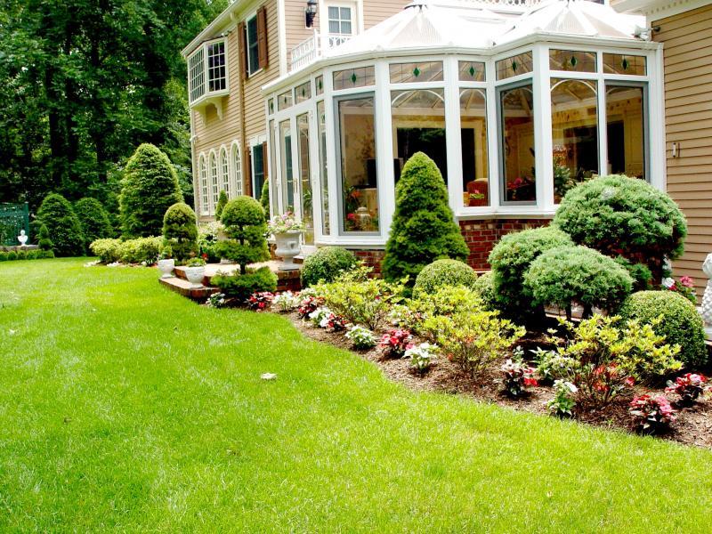 Greenwich garden designs maintenance portfolio for Garden design portfolio